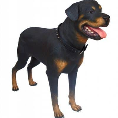 פסל של כלב רוטווילר