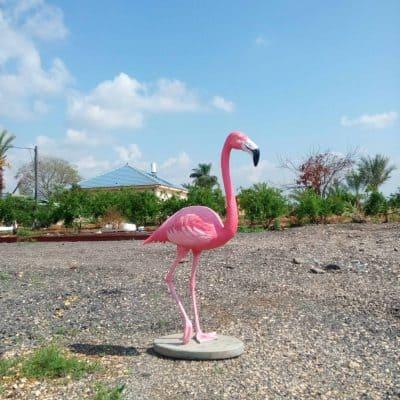 פסל של פלימנגו