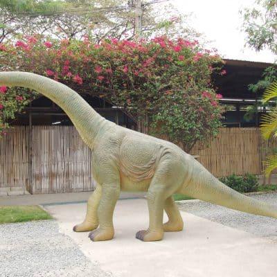 בייבי ברוכוזאורוס