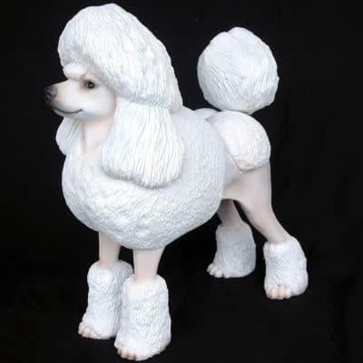 פסל של פודל לבן גזעי