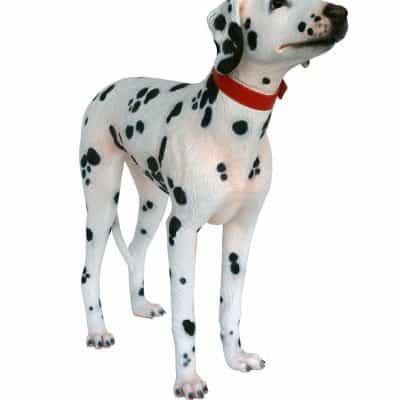 פסל כלב דלמטי