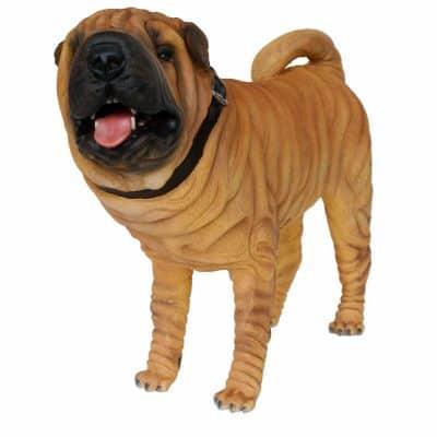 פסל של כלב שארפיי