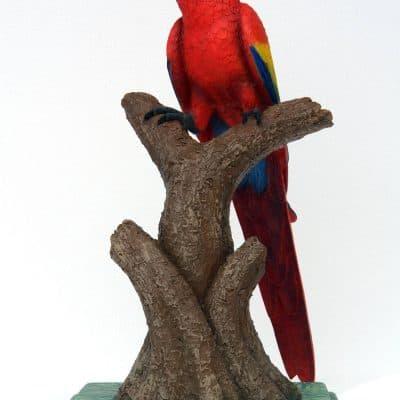 פסל תוכי ארה אדומה ראש למעלה