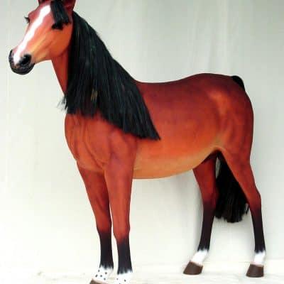 סוס חום
