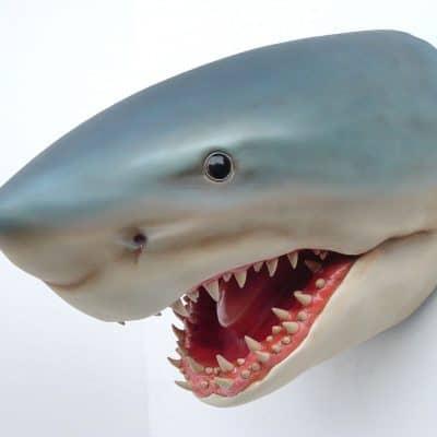 פסל של ראש כריש