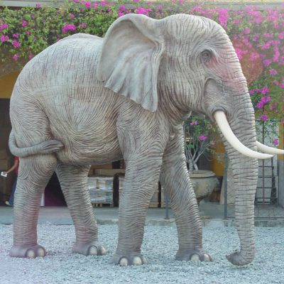 פיל ענק