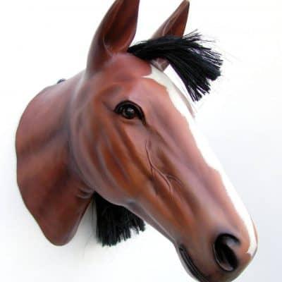 ראש סוס