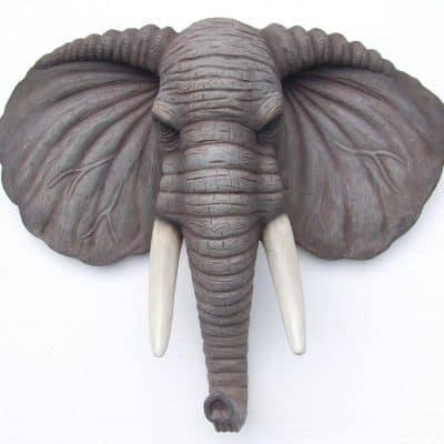 ראש פיל