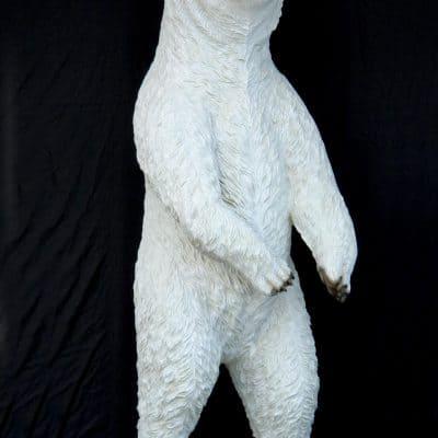 דב לבן ענק