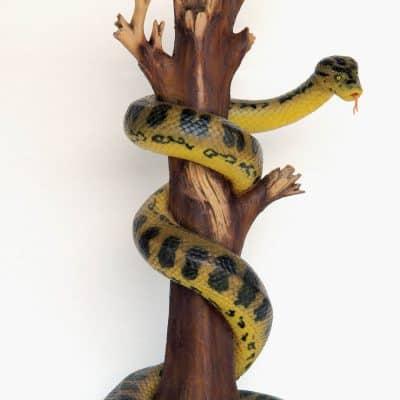 אנקונדה על עץ