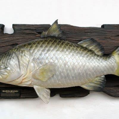 דג לתלייה