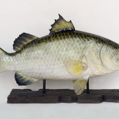 דג על סטנד