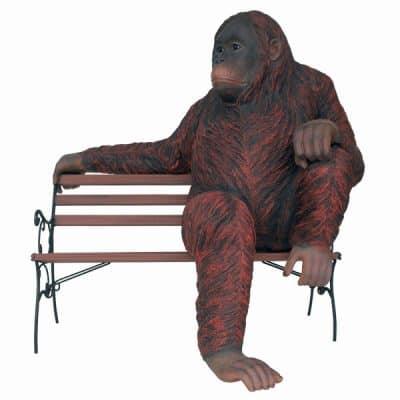 אורנגאוטן על ספסל