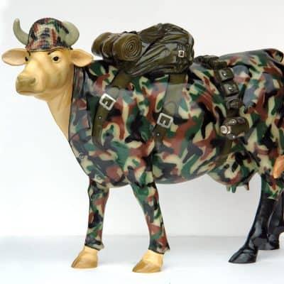 פרה חיילת