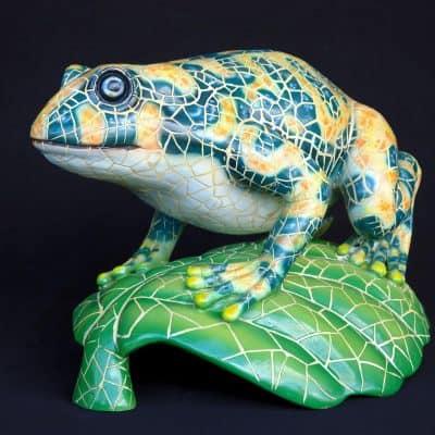 צפרדע על עלה