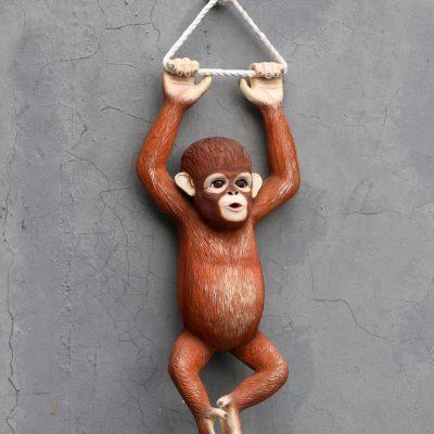פסל קוף נתלה על חבל