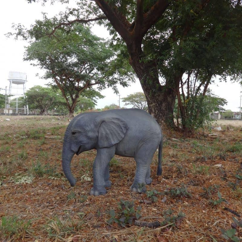 פסל של פיל קטן