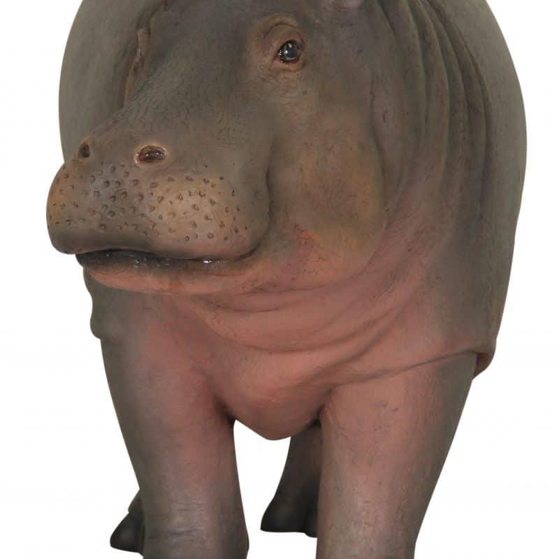 BABY HIPPO 1