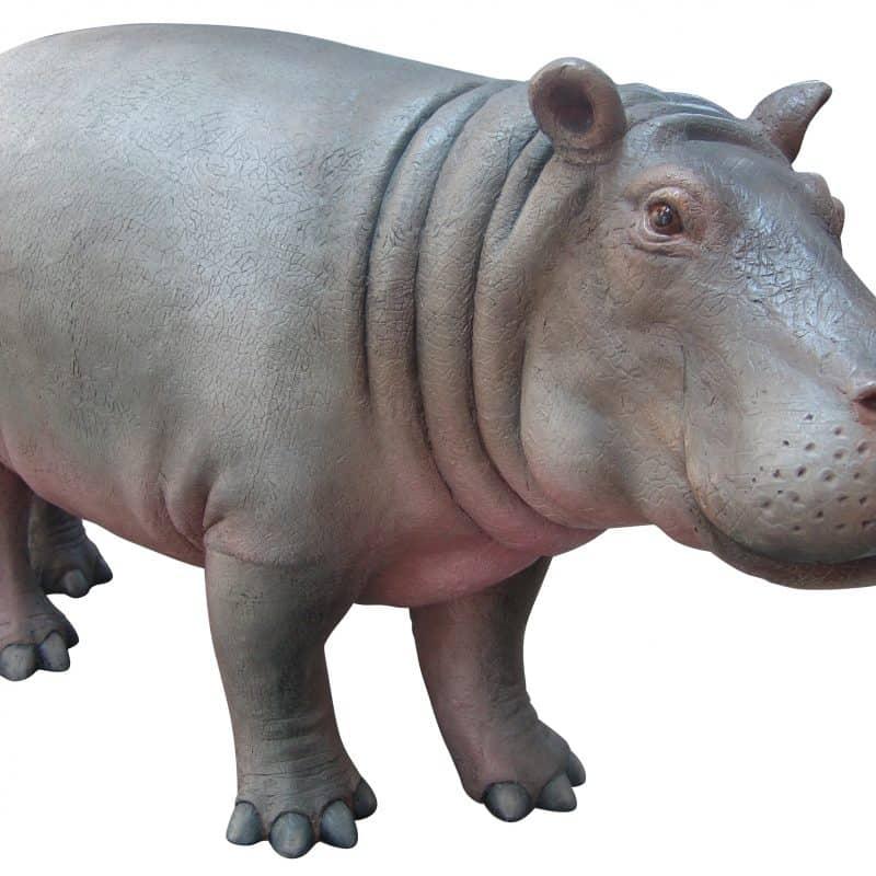 FSC1252 Baby_Hippo