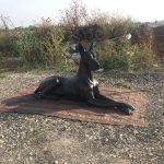 פסל של כלב דני ענק רובץ