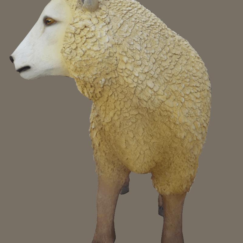 פסל של כבשה חדשה