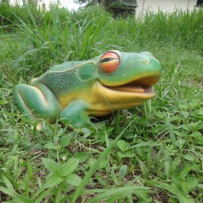 פסל של צפרדע עין אדומה