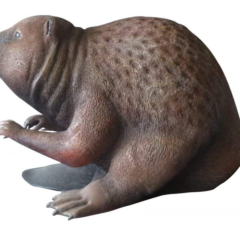 beaver_side