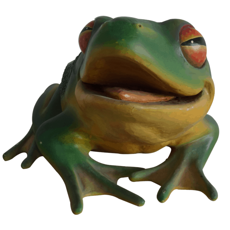 frog_front