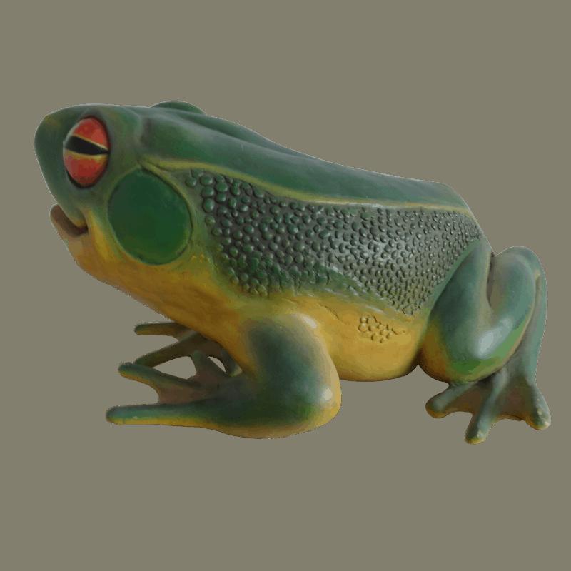 frog_side