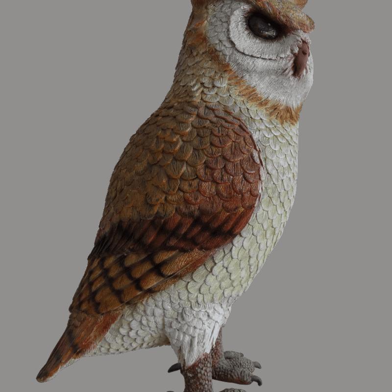 owl_side