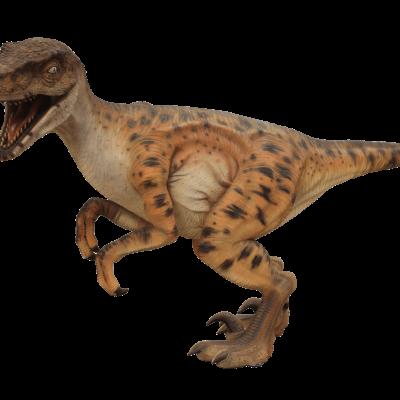 פסל של דינוזאור ולוקרפטור