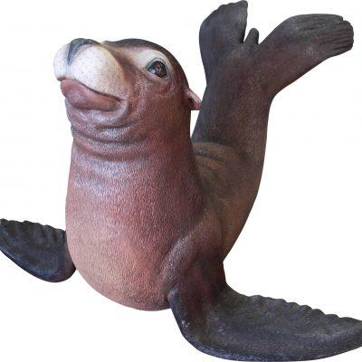 פסל של כלב ים חדש